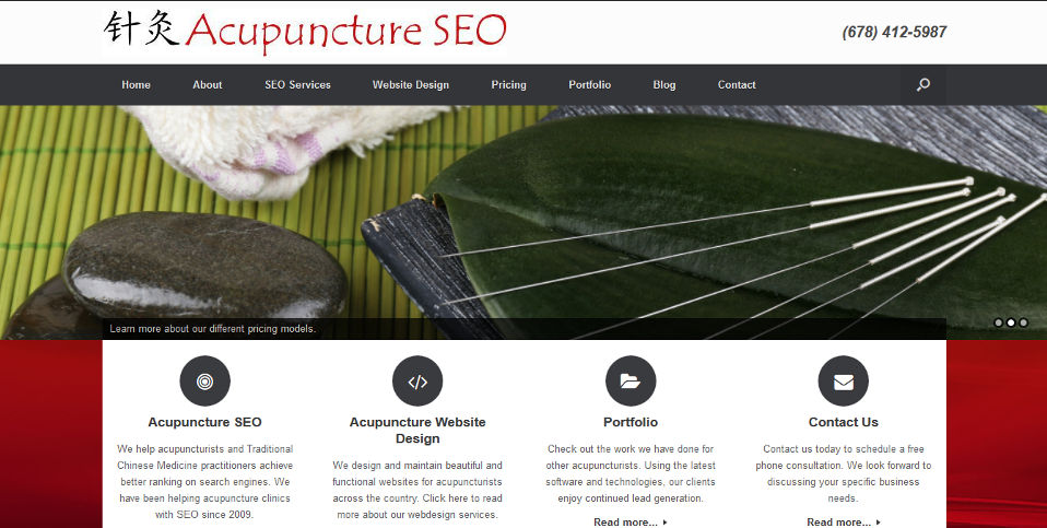 Acupuncture SEO